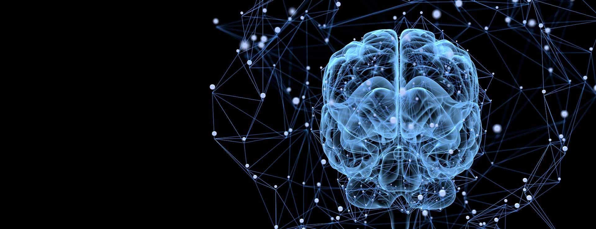Brain, Nerves and Spine | Johns Hopkins Medicine