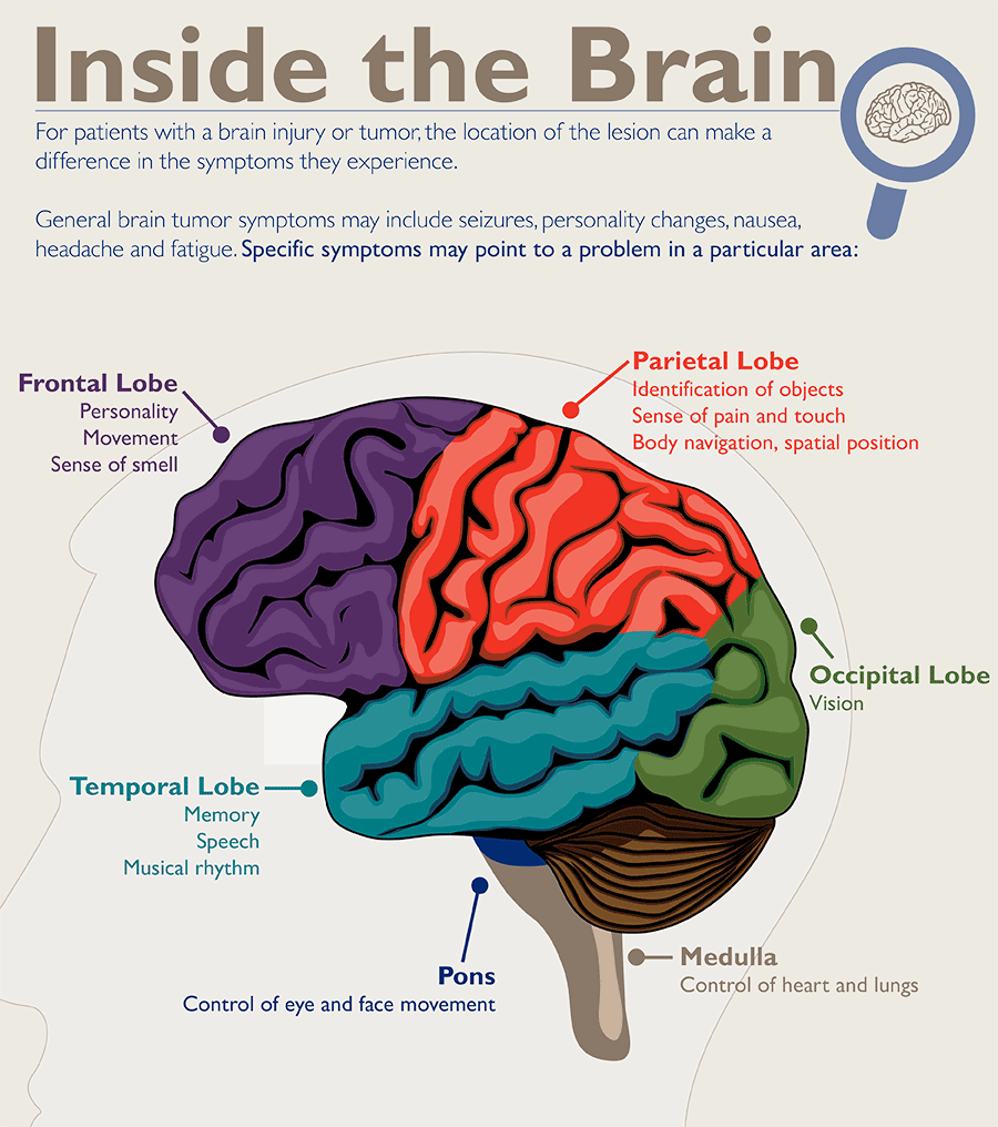 Diagram of different brain regions and symptoms specific to each.