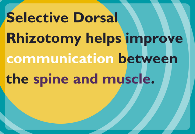 Selective dorsal rhizotomay helps improve communication between the spine and muscle.