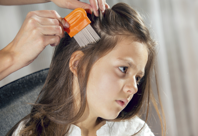 A mother using a comb to look for head lice.