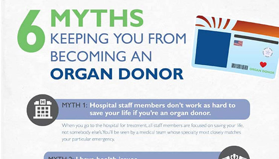 Preview of organ donation infographic.