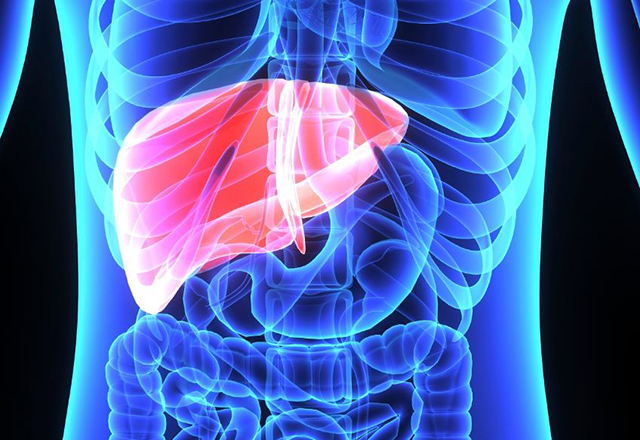 Image result for abnormal liver