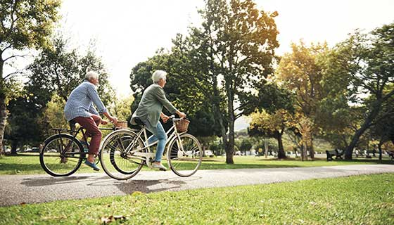 Old couple riding bicycles in a park