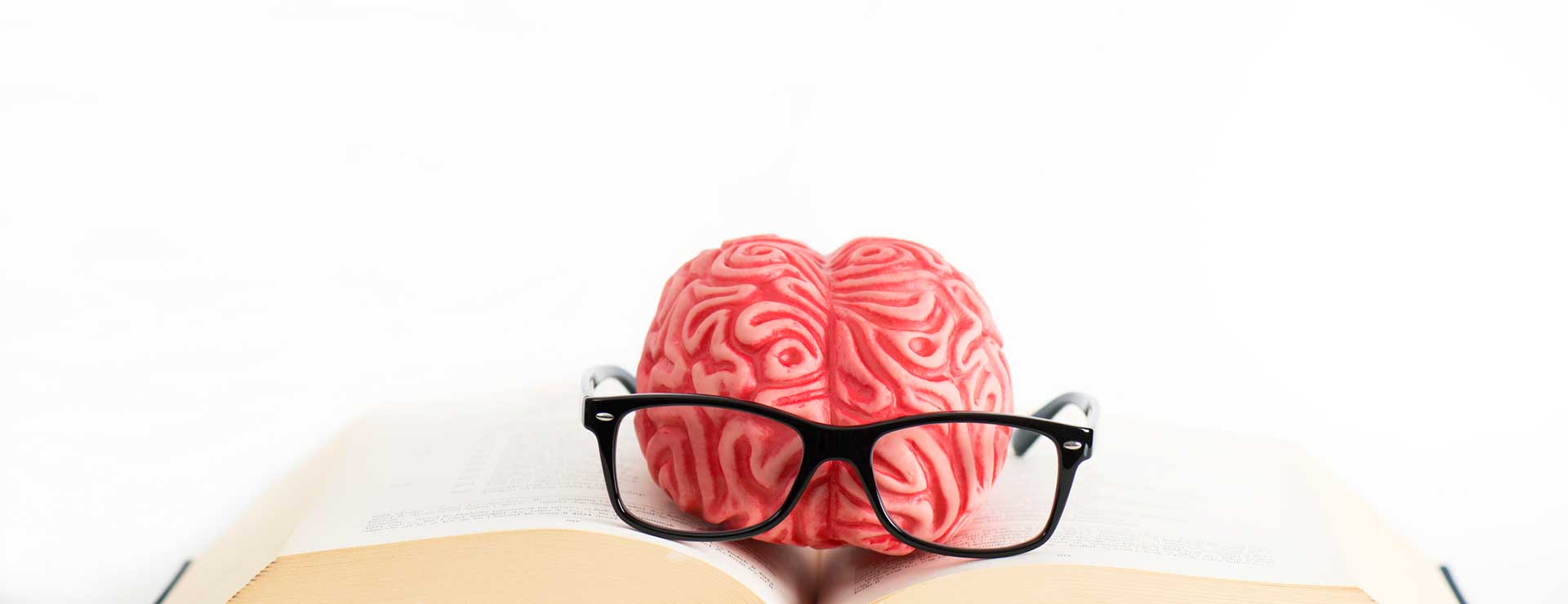 A model of a brain with glasses sitting on top of an open book