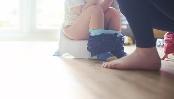 a toddler toilet training with parent