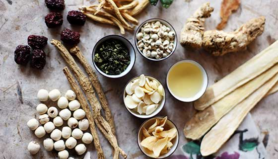 An assortment of herbs used in Chinese medicine.