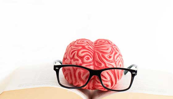 brain with glasses and book