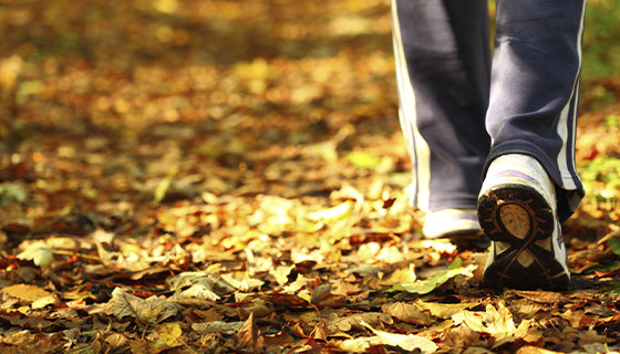 person walking on fallen leaves