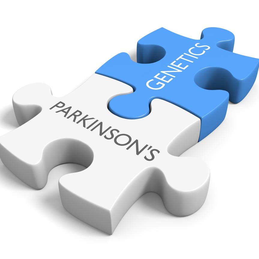 Two puzzle pieces joined together representing parkinson's and genetics