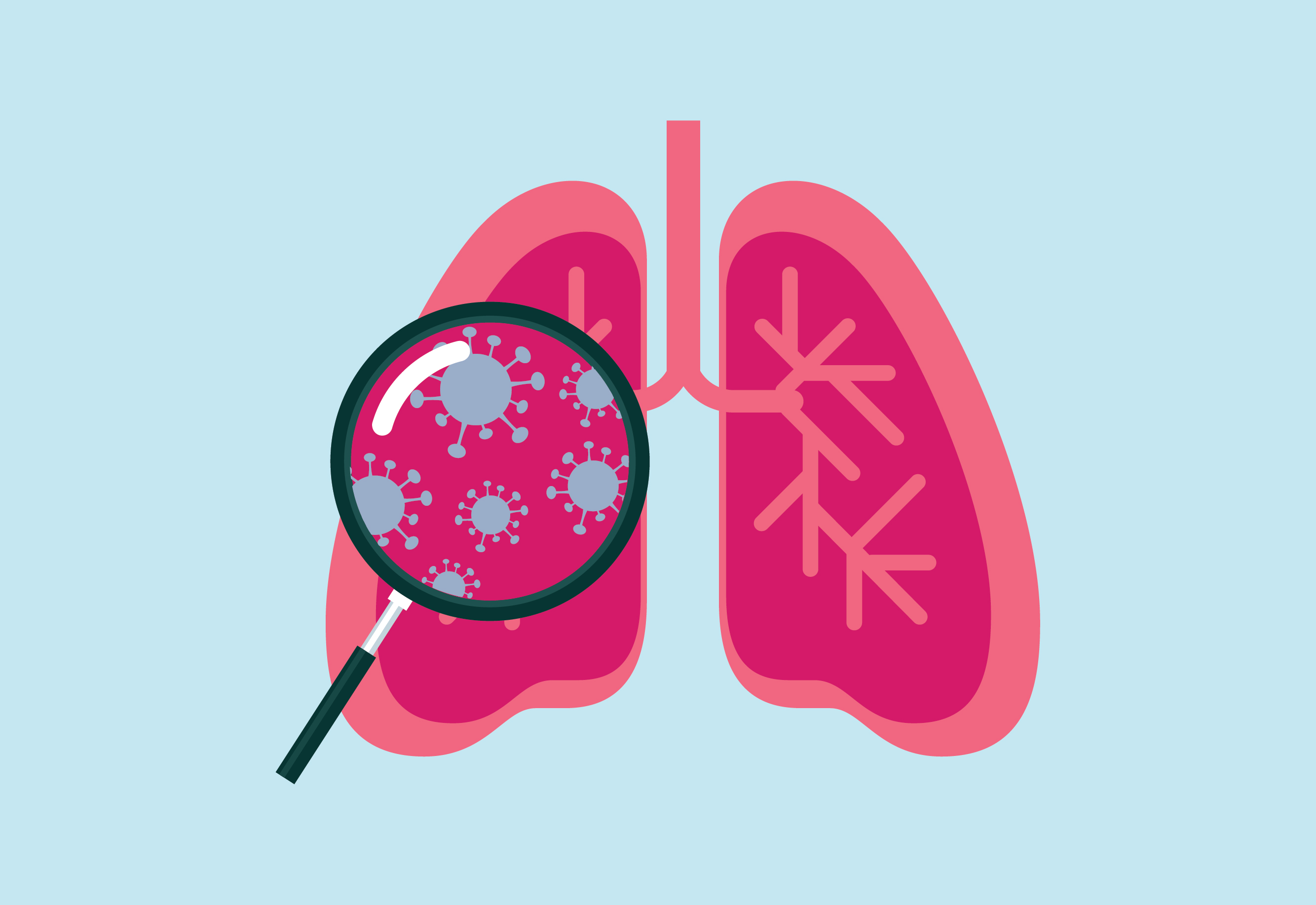 Icon of magnifying glass showing an enlarged view of a lung