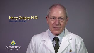 Harry Quigley  Ophthalmology