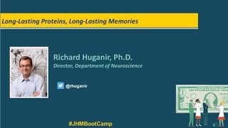 Long Lasting Proteins Long Lasting Memories  Richard Huganir PhD