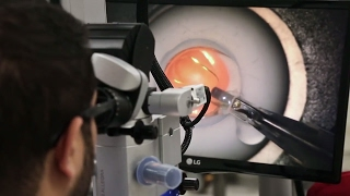 Taking Surgical Education to the Next Level at the Wilmer Eye Institute
