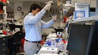 TomorrowsDiscoveries Reducing Cancer Deaths  Nickolas Papadopoulos PhD