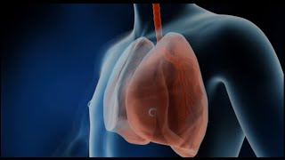 TomorrowsDiscoveries Strengthening Lungs before Transplants  Errol Bush MD