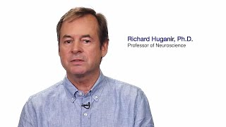 TomorrowsDiscoveries The Science Behind Memory FormationDr Richard Huganir
