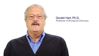 TomorrowsDiscoveries Why Eating Too Much Sugar Can Be Harmful  Dr Gerald Hart