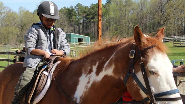 Camper on horseback
