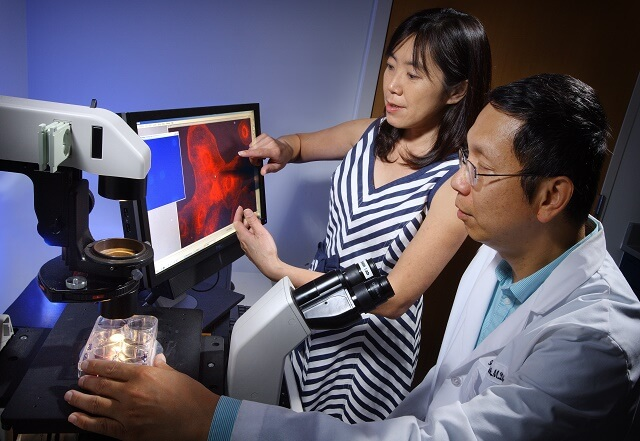Dr. Shih analyzing sample image