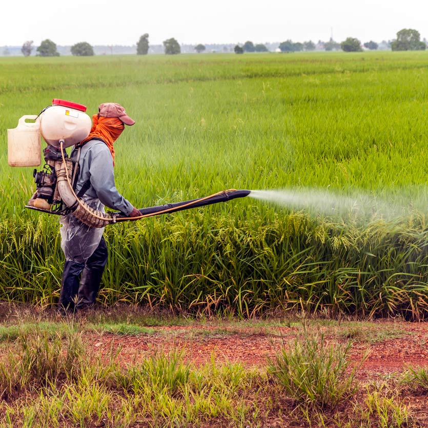 Farmer spraying pesticides on a field of crops