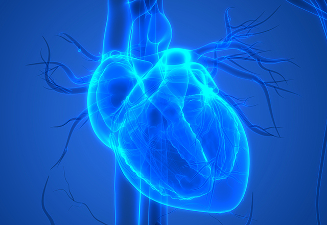 Graphic image of heart