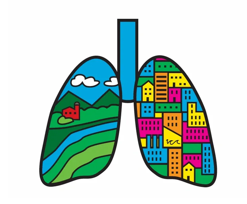 The Breathe Center's logo showing a colorful set of lungs.