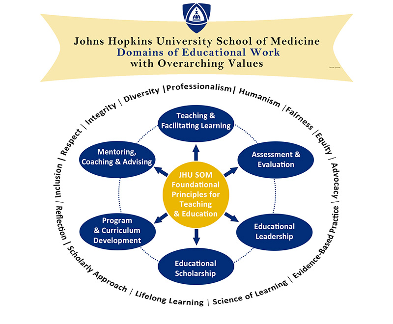 A chart illustrating the School of Medicine's domains of educational work.