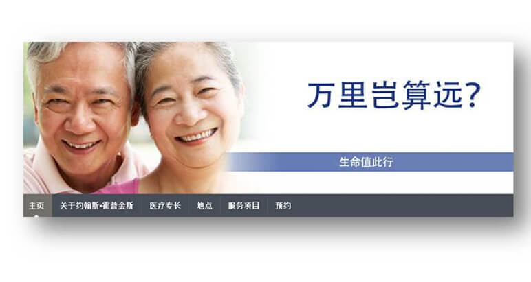 Screenshot of Chinese multilingual site banner.