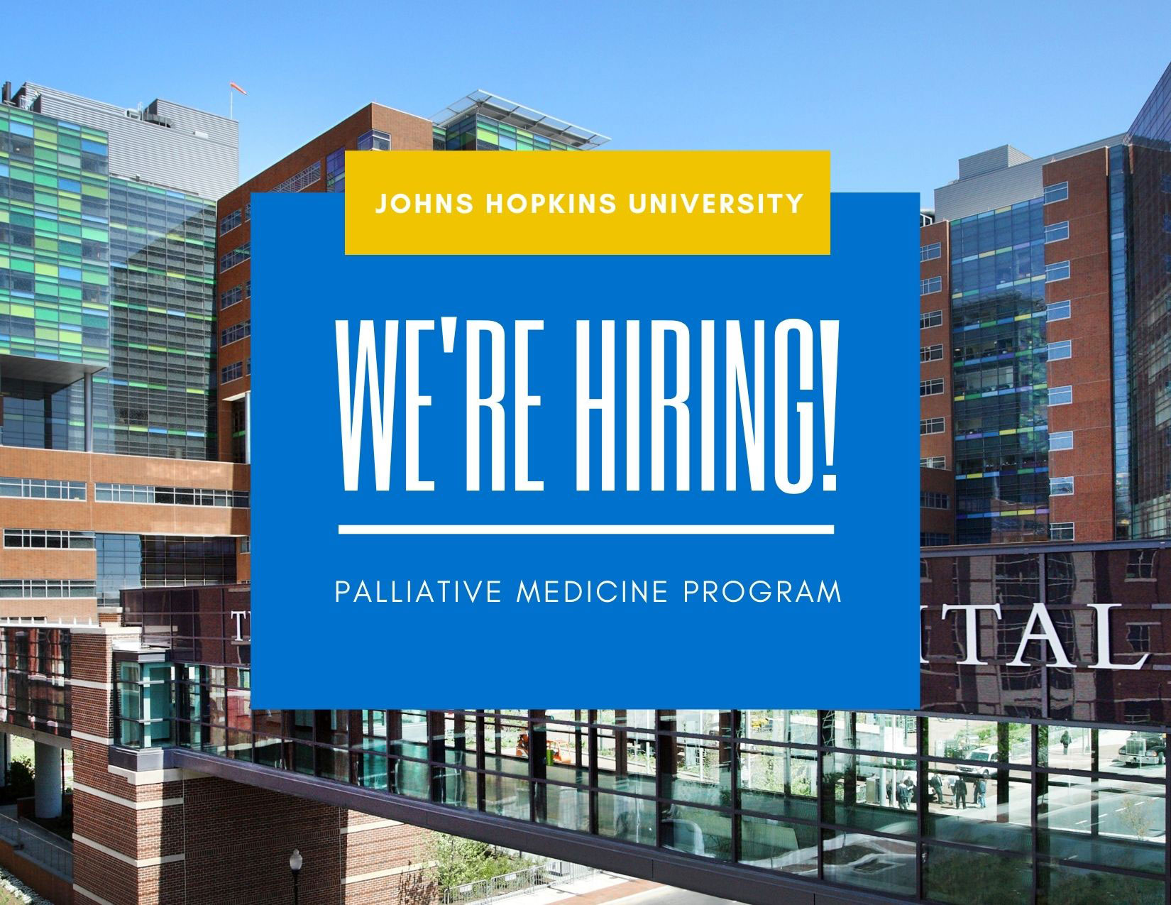 Palliative Medicine now hiring