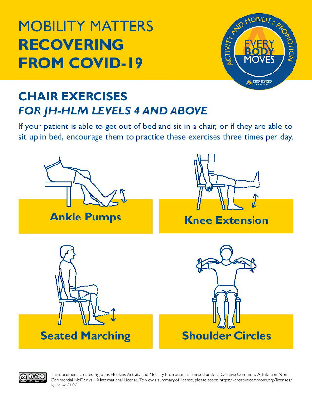 graphic describing exercises patients can do in a chair