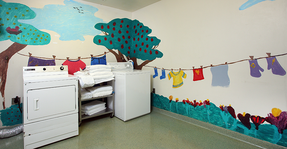 The laundry facilities available on the unit.
