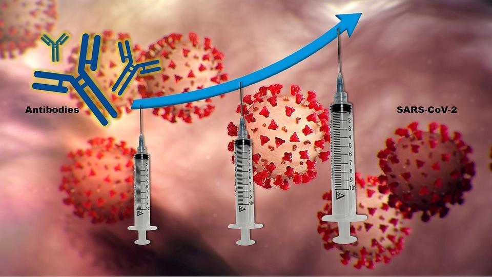 Three vaccine dose