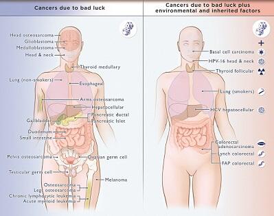 Cancer Comparisons