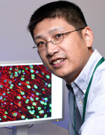 Dr. Hongjun Song in the lab.