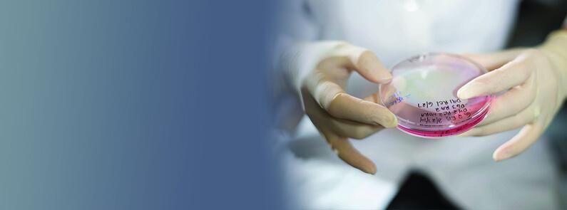 The Center For Stem Cells And Ocular Regenerative Medicine
