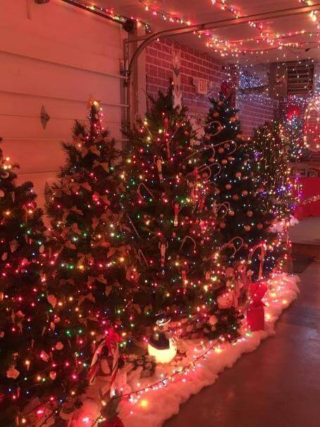 jim ozminski tree displays