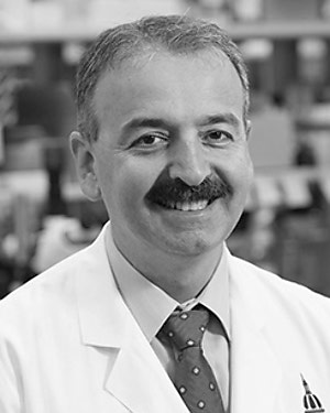 Headshot of Ahmet Hoke