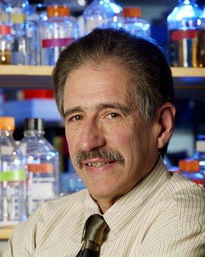 Headshot of William B. Guggino