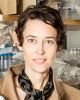 Headshot of Jennifer H. Elisseeff