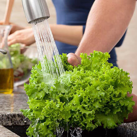 Washing kale in a kitchen sink