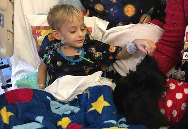 Daniel in the hospital with a therapy dog