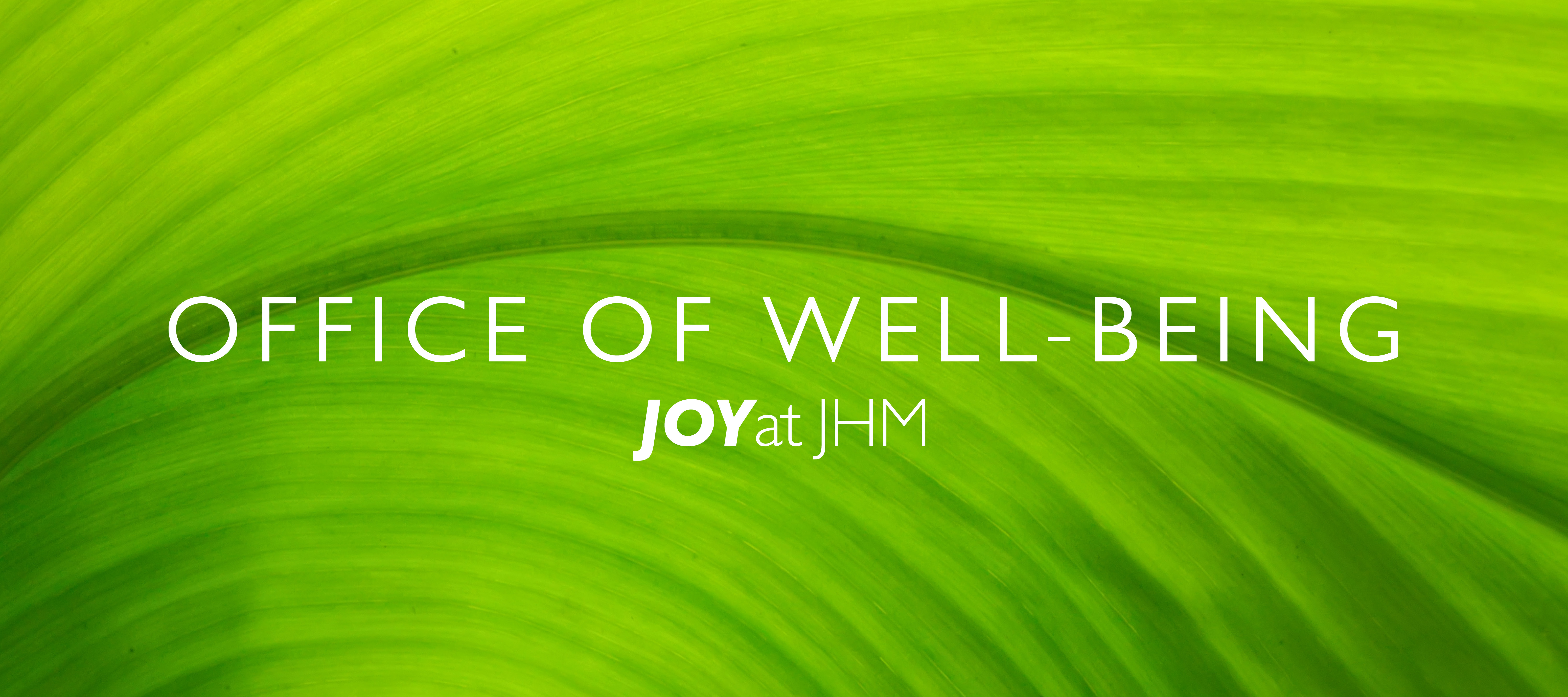 office of well being logo