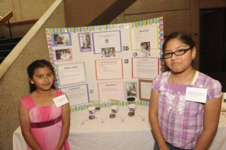 Science Fair 2010