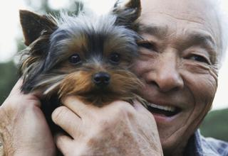 older Asian man holding little dog