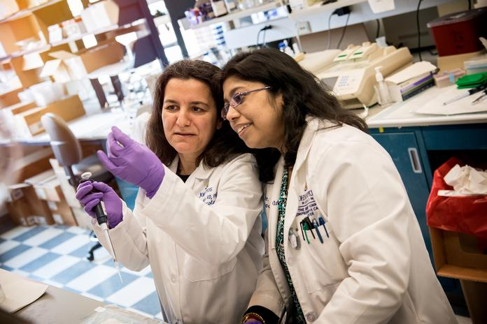 Mini-Brains' Are New Model for Brain Cancer