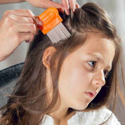 Parent runs a nit comb through daugther's hair