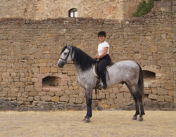 Anne Fink, a financial advisor, visited Spain one year after spinal surgery and was able to go horseback riding—one of the many things she had given up prior to having surgery