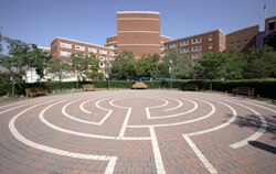 The labyrinth walking course.