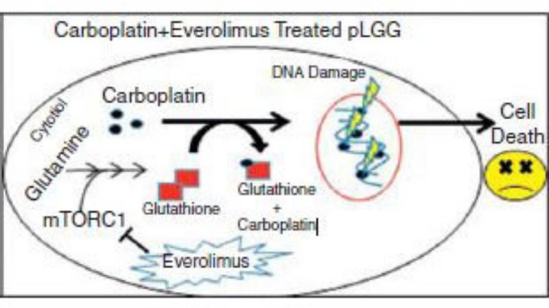 New Drug Combination Shows Promise for Common Pediatric Brain Tumor