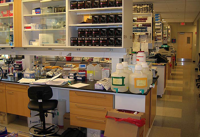A typical human genetics research lab